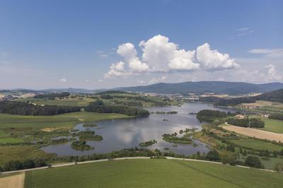 Naturforschertag Drachensee: Wald-Wiese-Wasser