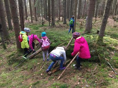Waldentdecker - Entdeckertour für Kinder