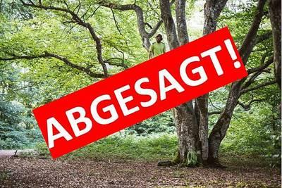 Bild ABGESAGT! Traufgänge Jubiläumswanderung 2:  Von Bäumen und Mythen - eine literarische Wanderung