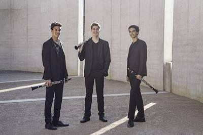 Bild Trio ClariNoir