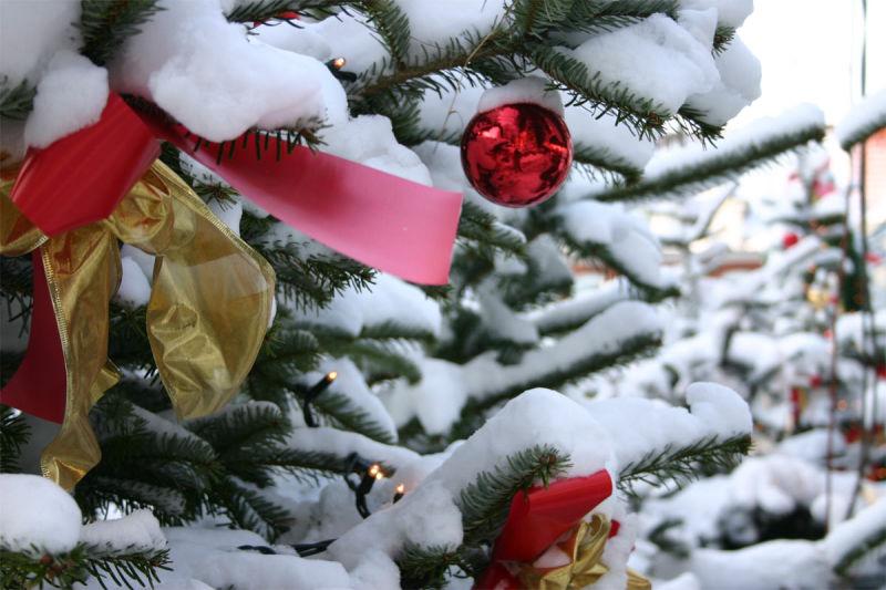 Weihnachten, Nikolaus. © Foto Oliver Franke